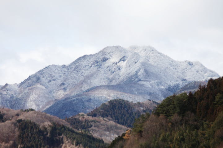 植物観察に訪れた山々(順不動)